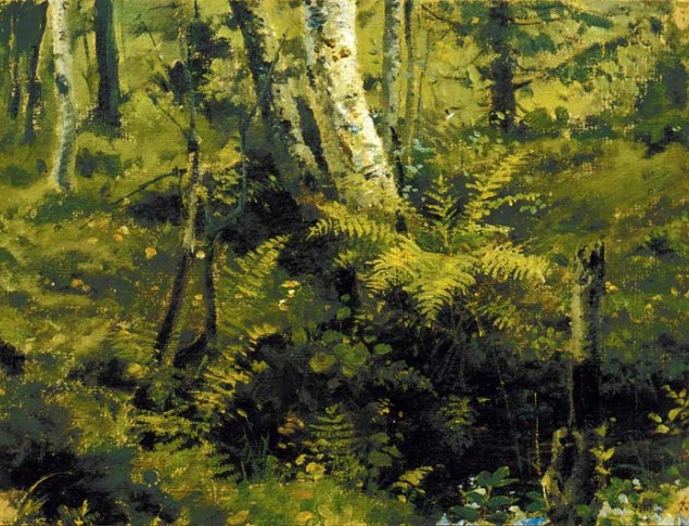 Vasily Polenov, Birches and Brackens, 1873